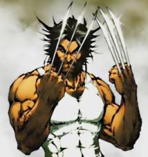 Wolverine-wolverine-9446039-580-615